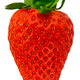 Isolated Organic Strawberry - PhotoDune Item for Sale