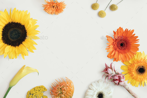Tropical flower frame - Stock Photo - Images