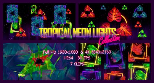 Tropical Neon Lights Collection VJ Loop