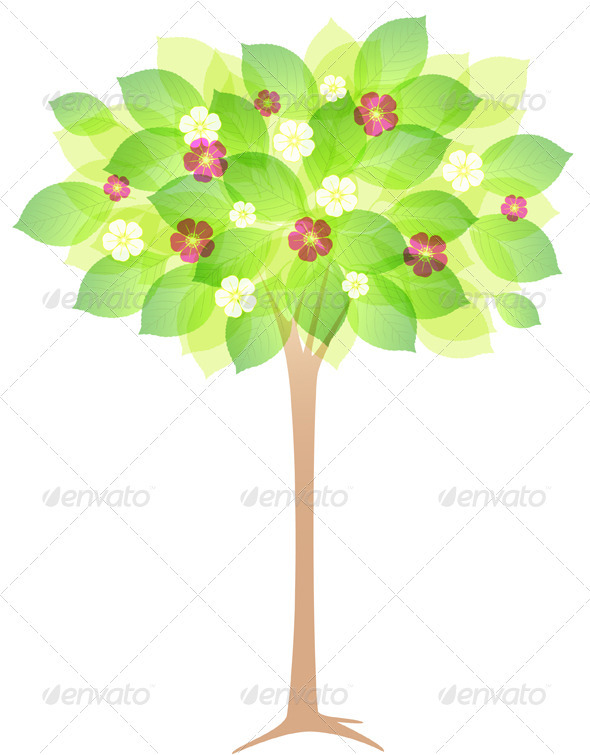 Spring Flowering Tree - Flowers & Plants Nature