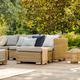 Beautiful summer day in garden - PhotoDune Item for Sale