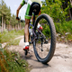 back male cyclist riding forest trail - PhotoDune Item for Sale