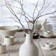 Spring birch branches in white ceramic vase - PhotoDune Item for Sale