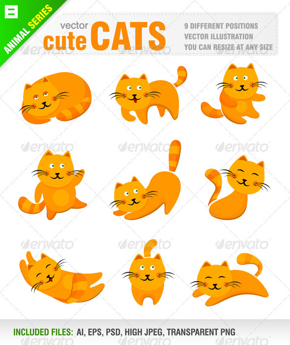Cute Cats - Animals Characters