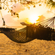Empty hammock swing around beach sea ocean at sunset or sunrise time - PhotoDune Item for Sale