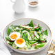 Salad with radish, cucumber, romaine lettuce, greens and boiled egg. - PhotoDune Item for Sale