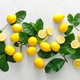 Lemons. Fresh juicy lemons with leaves on white background - PhotoDune Item for Sale