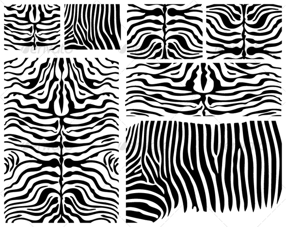Vector Zebra Skin - Patterns Decorative