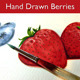 Hand Drawn Berries - GraphicRiver Item for Sale