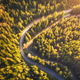 Aerial view of mountain road in beautiful forest at sunset - PhotoDune Item for Sale