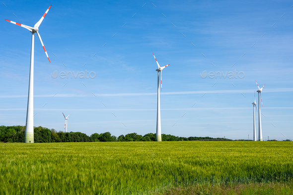 Wind turbines in a grain field - Stock Photo - Images