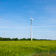 Wind turbines in a grain field - PhotoDune Item for Sale