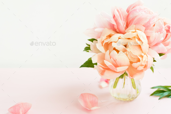 Fresh bunch of pink peonies in a tiny vase - Stock Photo - Images