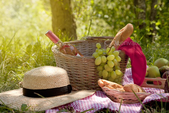 Picnic at the park on the grass: tablecloth, basket, healthy food, rose wine and accessories - Stock Photo - Images
