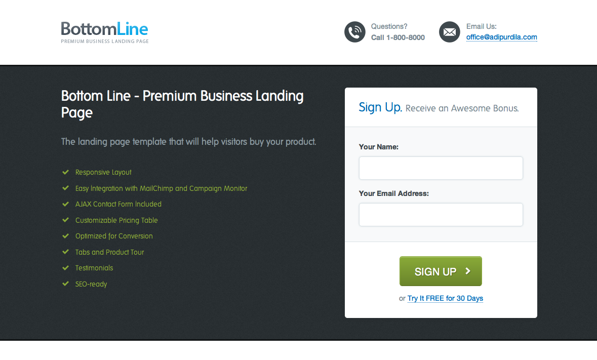 Bottom Line - Premium Business Landing Page by AdiPurdila | ThemeForest