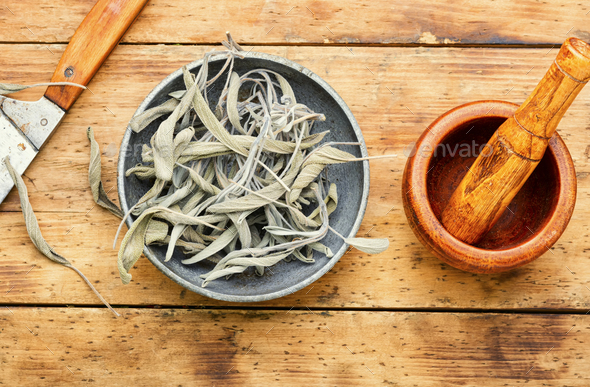 Dried salvia or sage - Stock Photo - Images