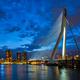 View of Erasmus Bridge Erasmusbrug and Rotterdam skyline. Rotterdam, Netherlands - PhotoDune Item for Sale