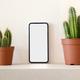 Smartphone with empty screen between cacti - PhotoDune Item for Sale