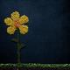 legumes background - PhotoDune Item for Sale