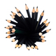 top view of many graphite pencils in round holder - PhotoDune Item for Sale