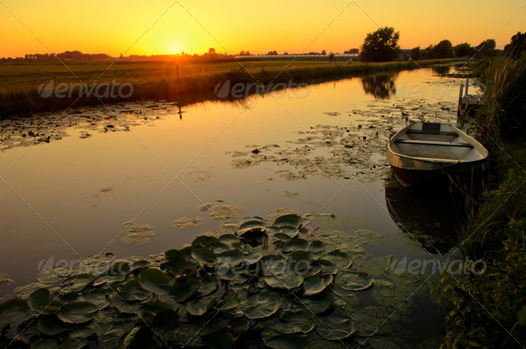 Sunset over a ditch with waterlilies - Stock Photo - Images