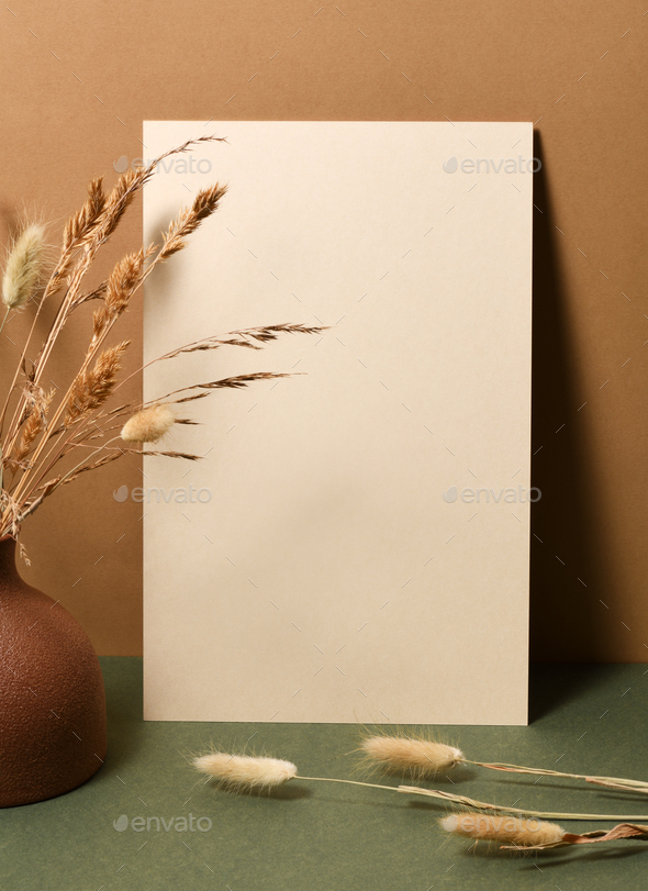 Blank paper with dry branches - Stock Photo - Images