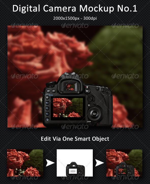 Digital Camera Mock-Up - Miscellaneous Packaging