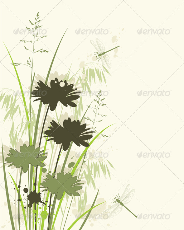 Floral Background with Chamomile - Flowers & Plants Nature