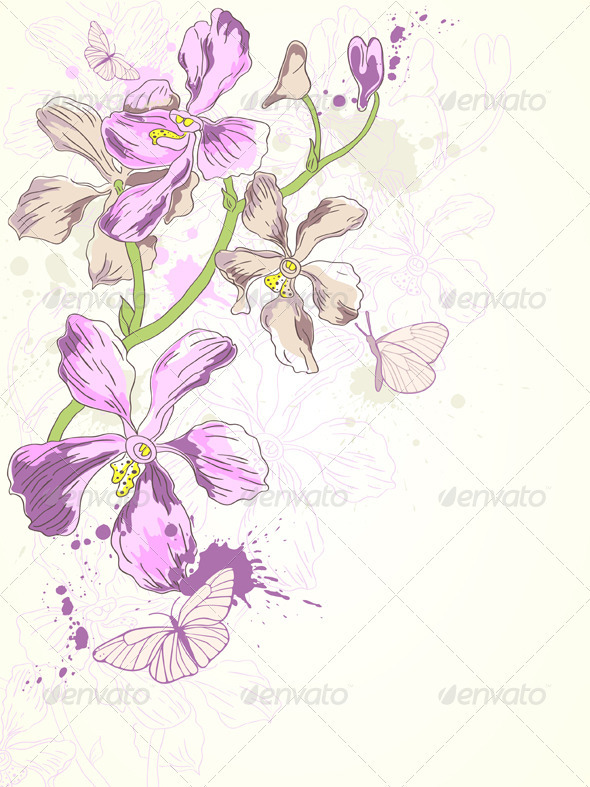 Background with Violet Orchids - Flowers & Plants Nature