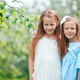 Adorable little girls in blooming apple tree garden on spring day - PhotoDune Item for Sale