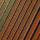 Aerial view Tulip field - PhotoDune Item for Sale