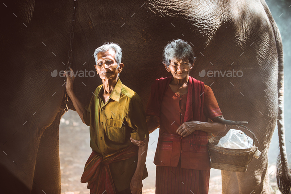 Elephant and senior couple in Thailand - Stock Photo - Images