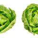 Two Romaine lettuce hearts, green cos lettuce heads, from above - PhotoDune Item for Sale