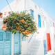 The narrow streets of the island with blue balconies, stairs and flowers in Greece - PhotoDune Item for Sale