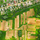 Aerial View Of Vegetable Gardens In Small Town Or Village. Skyline In Summer Evening. Village Garden - PhotoDune Item for Sale