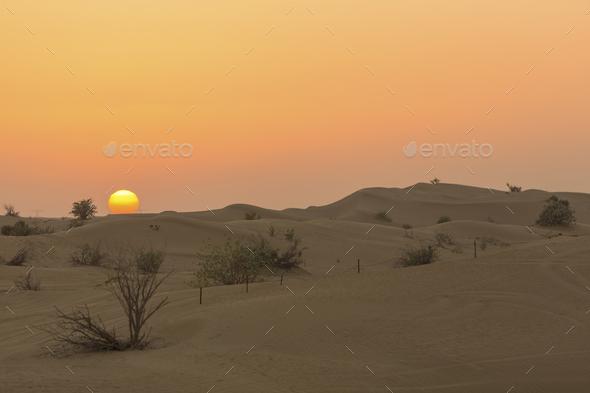 Sand dunes desert near Dubai in UAE - Stock Photo - Images