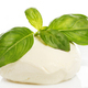Mozzarella - PhotoDune Item for Sale