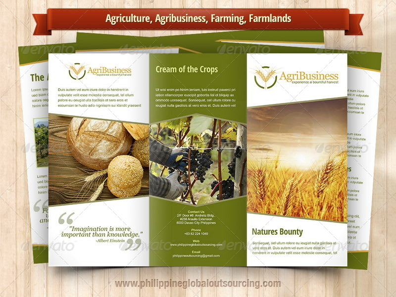 A4 trifold brochure template psd 6 variations 2 by for Agriculture brochure templates