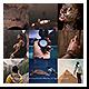 Mosaic Photo Adventure Vlog Logo Reveal - VideoHive Item for Sale