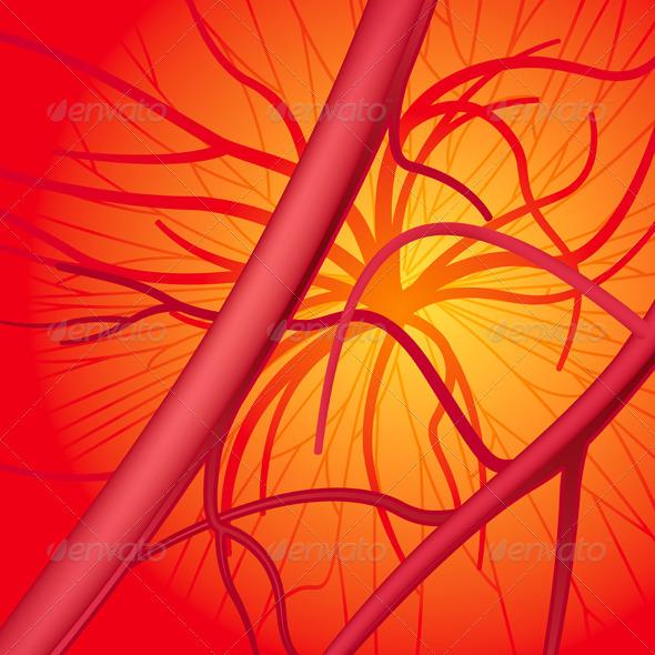 Blood System - Health/Medicine Conceptual