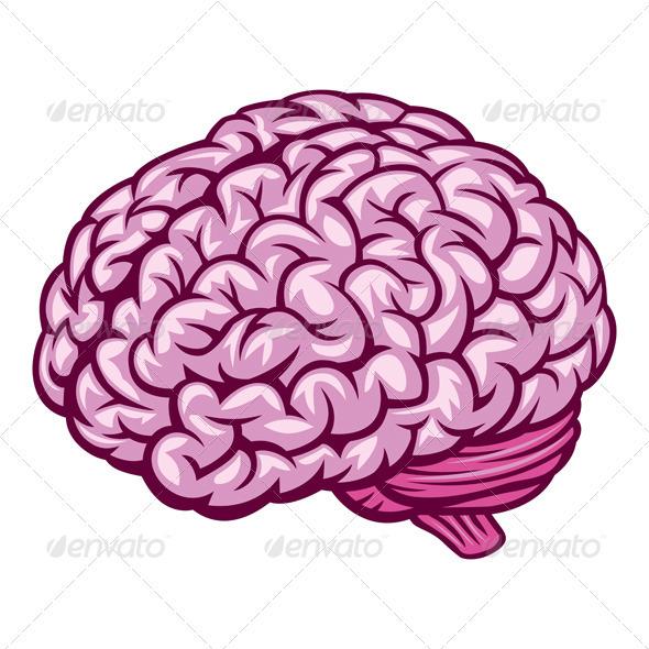 Brain - Organic Objects Objects