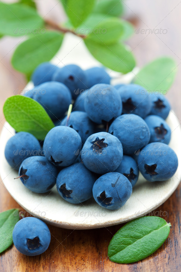 fresh blueberry - Stock Photo - Images