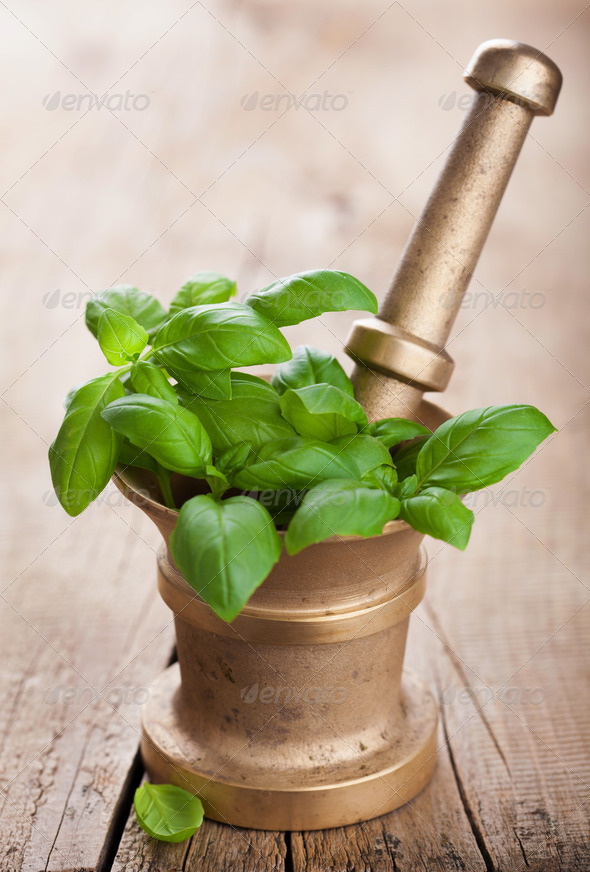 basil in mortar - Stock Photo - Images