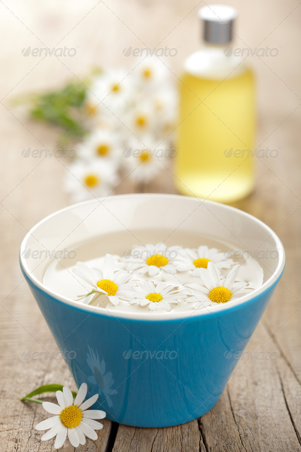 camomile flowers and essential oil - Stock Photo - Images