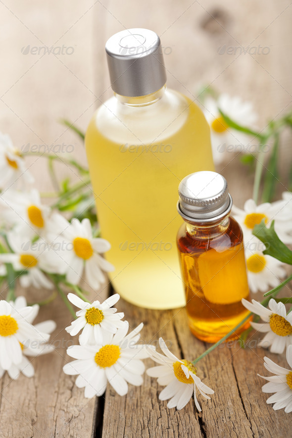 essential oil and camomile flowers - Stock Photo - Images