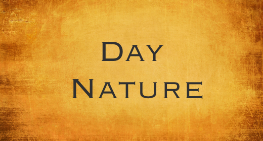 Day Nature