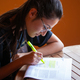 University student studying for an exam underlining text with highlighter. - PhotoDune Item for Sale