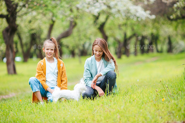 Two little kids on picnic in the park - Stock Photo - Images