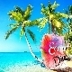 Summer Travel Tropical House For Vacation