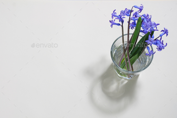 Small bouquet of blue flowers - Stock Photo - Images
